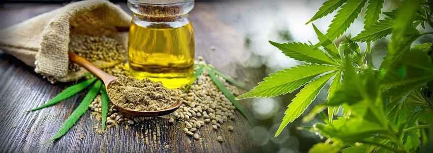 the-differences-between-hemp-cbd-and-cannabis-cbd